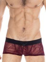 L'Homme Agosto: V-Boxer, bordeaux