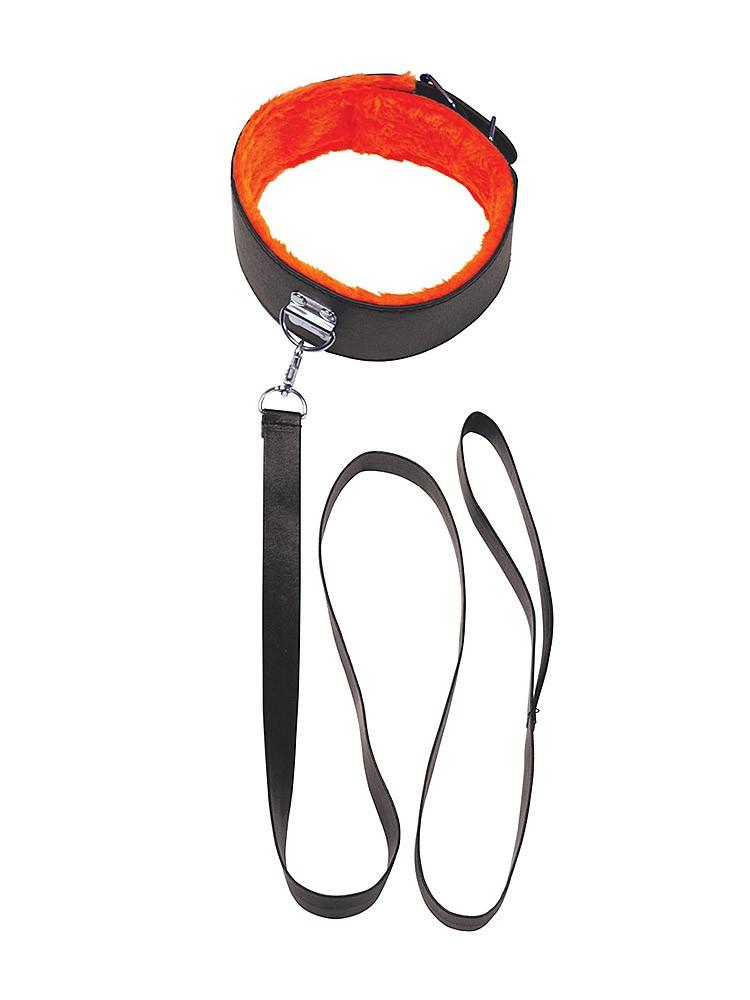 iconbrands Orange: Halsband mit Leine, schwarz/orange