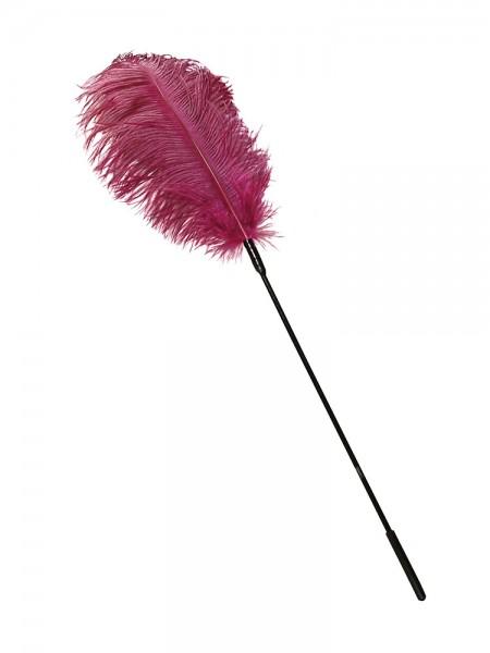 Federstab, pink