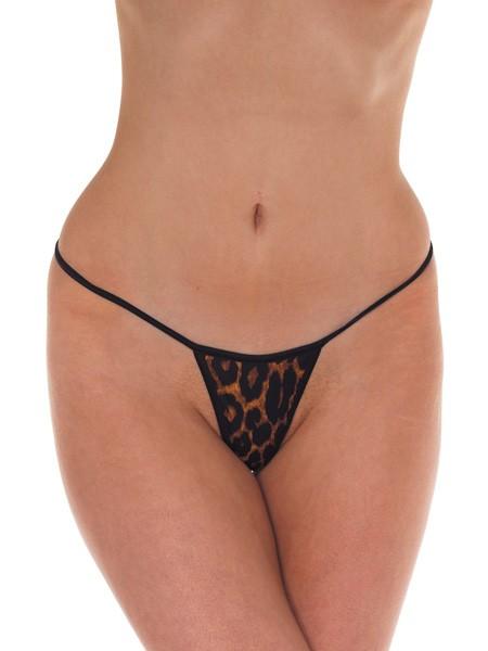 Rimba Minitanga, leopard