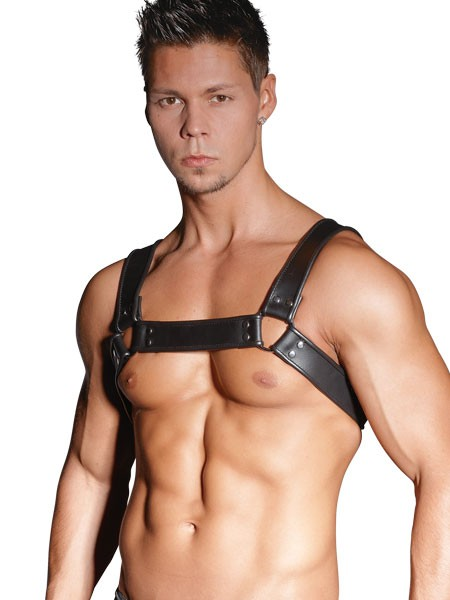 Leder-Harness, schwarz